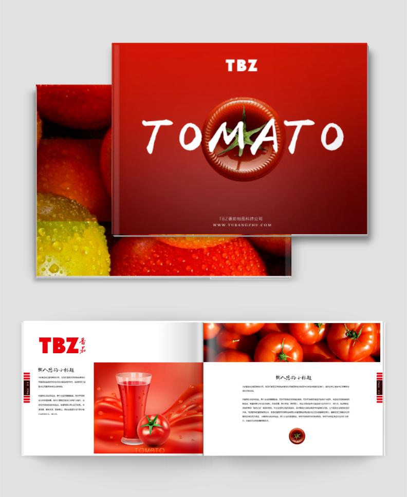 企业产品横版宣传册